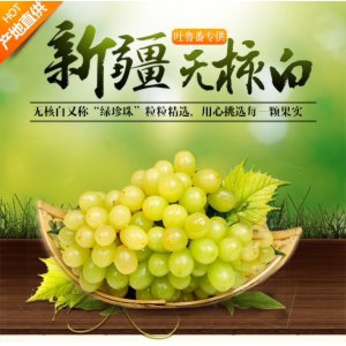 新疆 鲜葡萄  吐鲁番无核白 鲜葡萄【件】