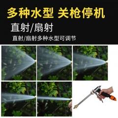 高压水枪12v车载洗车机家用220v洗车器 超大功率便携式小型洗车泵